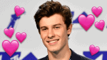 Reasons We Want Shawn Mendes to Be Our Boyfriend